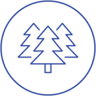 South-Pole-Group-CO2-Scheme-Forest.png